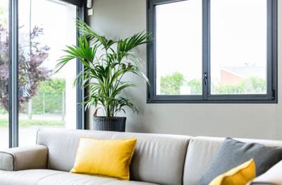 Les fenêtres structures PVC