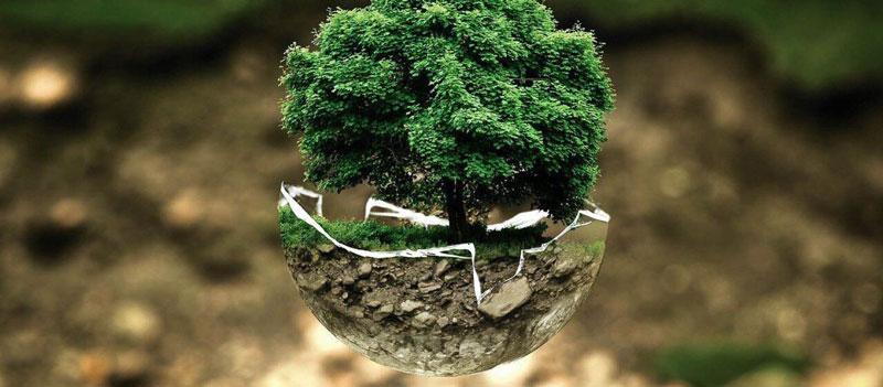 Fenêtre PVC, aluminium ou bois : l'impact écologique des matériaux